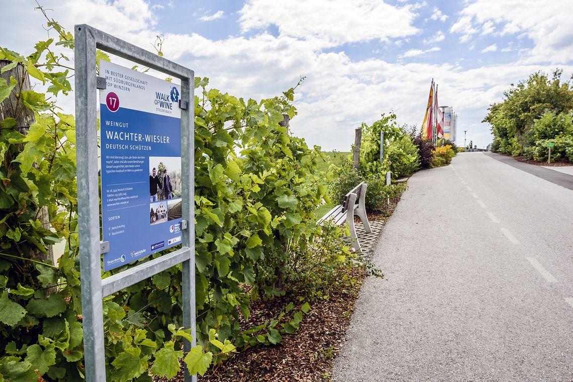 Walk of Wine