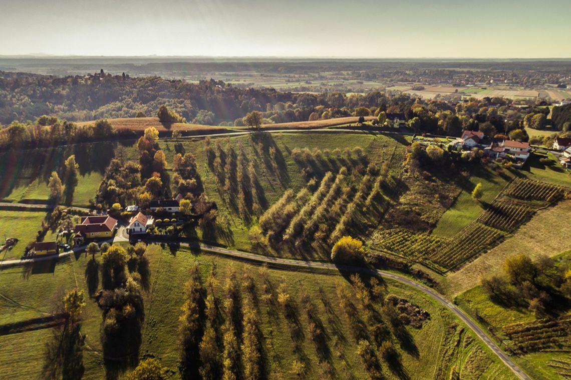 Zur Burgauberger Aussichtswarte Tour