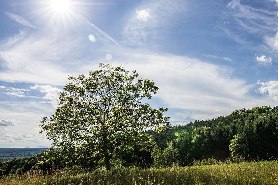 Stegersbach Wanderung