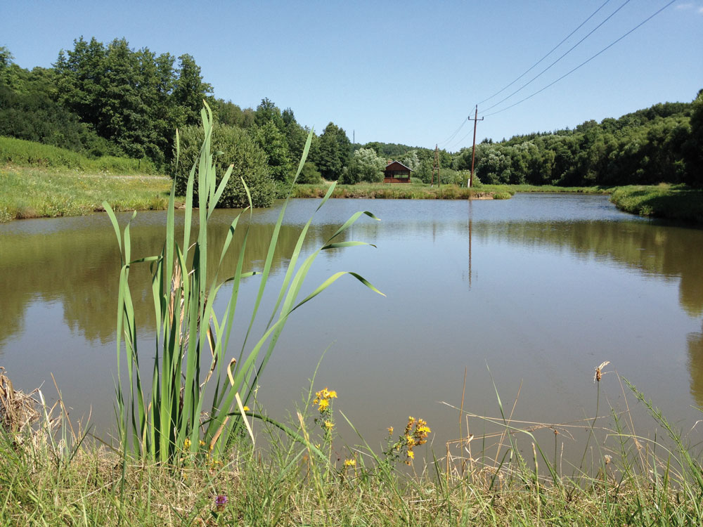 Partnergemeinde der Golf- und Thermenregion Stegersbach