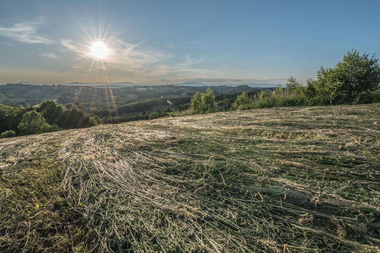 Die Golf- und Thermenregion Stegersbach bietet die Grundlage für viele Sportarten